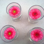 flowers in a glass